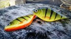 Wobler Lost Lures Ferox S 10cm 36g F2 Yellow Perch